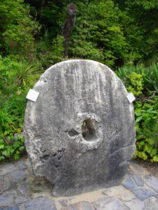 pietra rai